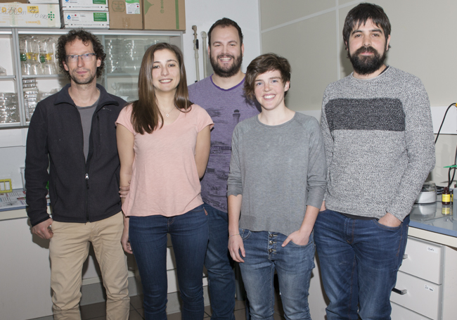 UPV/EHU researchers account for the complex symptoms of Angelman syndrome