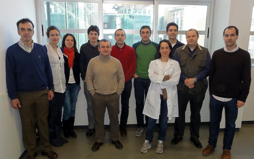 Applied Photonics Group (Bilbao - Spain)