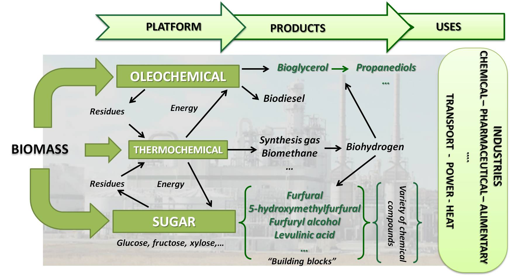 thesis food additives the processes that subsequently transform these intermediates to the biofuels and chemical products of higher added value food additives drugs polymers